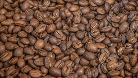 Arabica υπόβαθρο καφέ Στοκ φωτογραφία με δικαίωμα ελεύθερης χρήσης