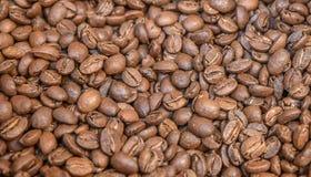 Arabica υπόβαθρο καφέ Στοκ εικόνα με δικαίωμα ελεύθερης χρήσης