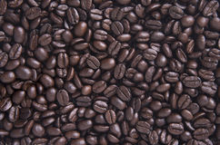 Arabica φασόλια καφέ για το υπόβαθρο Στοκ φωτογραφία με δικαίωμα ελεύθερης χρήσης