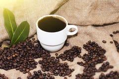 Arabica φασόλια καφέ σε μια burlap τσάντα Στοκ Φωτογραφία