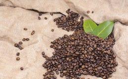 Arabica φασόλια καφέ σε μια burlap τσάντα Στοκ εικόνα με δικαίωμα ελεύθερης χρήσης