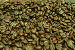 Arabica Royalty Free Stock Photos