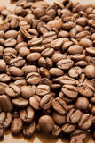 Arabica Beans Stock Photo