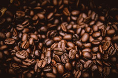 Arabica brown rosted coffee beans Royalty Free Stock Photos