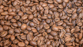 Arabica coffee background. Beautiful photo with arabica coffee background Royalty Free Stock Image