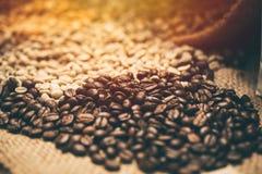 Arabica coffee bean vintage tone. Arabica coffee bean brown vintage tone Royalty Free Stock Image