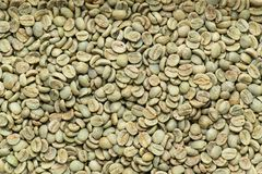 Arabica coffee beans, background. Close-up roasted Arabica coffee beans, texture, background Stock Photos