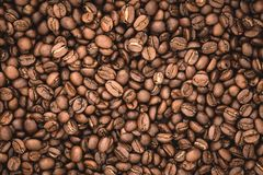 Arabica coffee beans background. Nature Stock Image