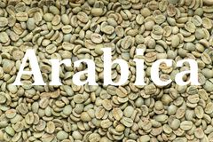 Arabica coffee beans, background. Roasted Arabica coffee beans texture, background, with written word Arabica Royalty Free Stock Images
