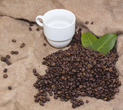 Arabica coffee beans in a burlap bag. Grain coffee mugs on a background of the bag. Green leaves of coffee Stock Photo