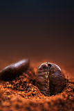 Arabica Coffee beans macro on a brown background close up, macro Royalty Free Stock Photo