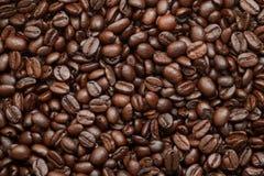 Arabica coffee beans. Medium roasted Arabica coffee beans background Stock Photos