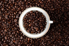 Arabica coffee beans. Medium roasted Arabica coffee beans view from above Stock Photos