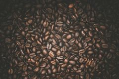 Arabica Coffee Beans. Photo Background. Cafe and Coffee Backdrop Royalty Free Stock Photos