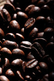 Arabica coffee beans texture brown Stock Image