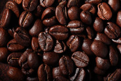 Arabica coffee beans texture brown Royalty Free Stock Photos