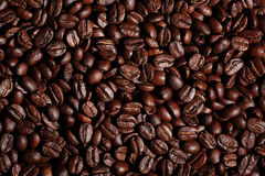 Arabica coffee beans texture brown Stock Photography