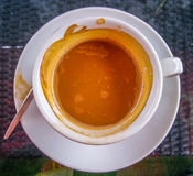 Arabica cup of coffee in the autumn morning Royalty Free Stock Photo