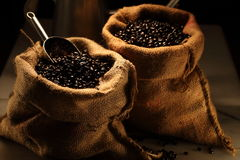 Arabica Koffie Royalty-vrije Stock Fotografie