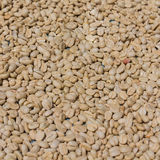 Arabica koffie stock afbeeldingen