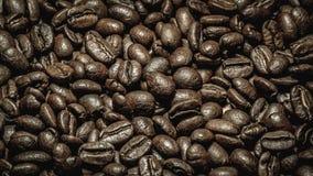 Arabica koffie Stock Fotografie