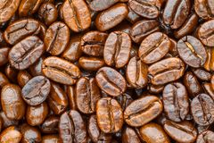 Arabica rôti de café Photos libres de droits