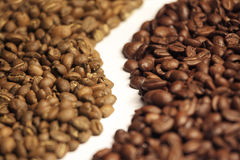 Arabica and robusta coffee beans Royalty Free Stock Image