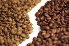 Arabica und Robustakaffeebohnen Lizenzfreies Stockbild