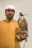 Arabienvalkenier royalty-vrije stock foto