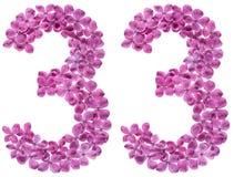 Arabisch cijfer 33, drieëndertig, van geïsoleerde bloemen van sering, Royalty-vrije Stock Fotografie