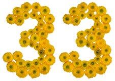 Arabisch cijfer 33, drieëndertig, van gele bloemen van buttercu Stock Foto