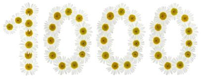 Arabisch cijfer 1000, duizend, van witte bloemen van chamomi Stock Foto