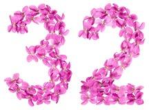 Arabisch cijfer 32, tweeëndertig, van bloemen van altviool, isoleerde o Stock Afbeeldingen