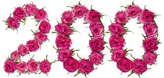 Arabisch cijfer 200, twee honderd, van rode bloemen van roze, isola Royalty-vrije Stock Afbeeldingen
