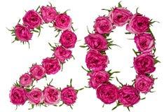 Arabisch cijfer 20, twintig, van rode geïsoleerde bloemen van roos, Stock Afbeelding