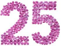Arabisch cijfer 25, vijfentwintig, van geïsoleerde bloemen van sering, Stock Fotografie