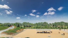 Arabische paardlooppas binnen paddock in de stofwoestijn timelapse hyperlapse, de V.A.E stock afbeeldingen