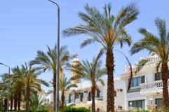 Arabische rechteckige und quadratische Häuschen, Häuser in der Wüste mit Balkonen auf dem Hintergrund von grünen Palmen und ein s Stockfotos