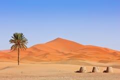 Arabische Sanddünen und Brunnen Lizenzfreies Stockfoto