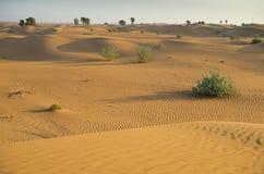 Arabische woestijn Stock Afbeeldingen