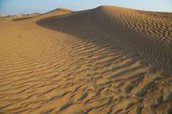 Arabische woestijn Stock Foto