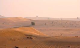 Arabische woestijn Royalty-vrije Stock Foto's