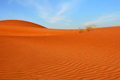Arabische woestijn Stock Foto's