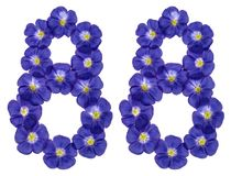Arabische Ziffer 88, achtundachzig, von den blauen Blumen des Flachses, Isolator Lizenzfreie Stockfotografie
