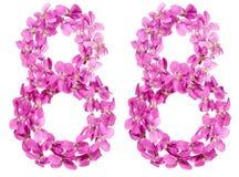 Arabische Ziffer 88, achtundachzig, von den Blumen der Viola, lokalisiert Stockbilder
