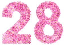 Arabische Ziffer 28, achtundzwanzig, vom rosa Vergissmeinnicht blüht Stockfotografie