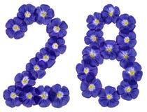 Arabische Ziffer 28, achtundzwanzig, von den blauen Blumen des Flachses, Isolator Stockbild