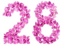 Arabische Ziffer 28, achtundzwanzig, von den Blumen der Viola, lokalisiert Lizenzfreie Stockfotos