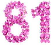 Arabische Ziffer 81, achtzig eins, von den Blumen der Viola, lokalisierte O Stockfotografie