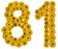 Arabische Ziffer 81, achtzig eins, von den gelben Blumen der Butterblume, Stockfotografie